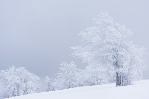 15-landscape-photography-winter-photography-vosges-france