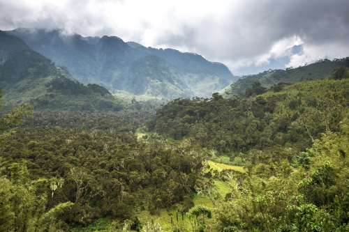 4-landscape-photography-mountain-photography-rwenzori-uganda