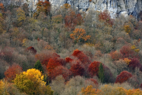 4-nature-photography-doubs-france