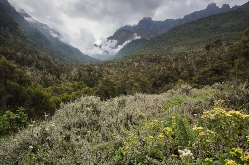 6-landscape-photography-mountain-photography-rwenzori