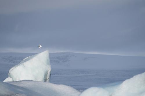9-landscape-photography-glacier-photography-jokulsarlon-iceland