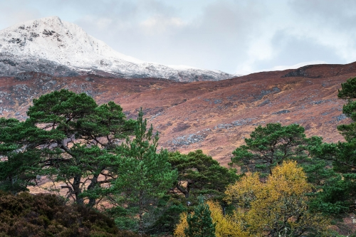 Frédéric-Demeuse-nature-photographer-highlands-scotland-6