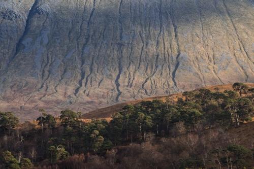 Frédéric-Demeuse-nature-photographer-highlands-scotland-9