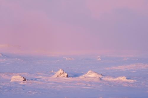 Frédéric-Demeuse-nature-photography-Iceland-4