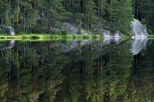 FredericDemeuse-photographer--Fulufjalett-National-Park-Sweden
