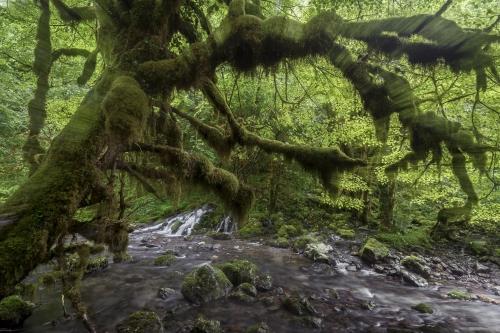 frédéric-demeuse-landscape-photography