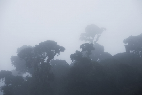 frederic-demeuse-los-quetzales-costa-rica